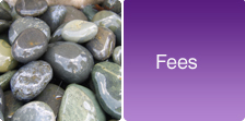 Fees - A Place To Be - Counselling Hertfordshire